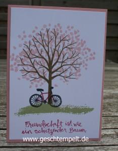 Stampin up, Baum der Freundschaft