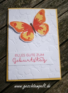 Stampin up, Schmetterlingsschwarm, Watercolor wings, Landlust