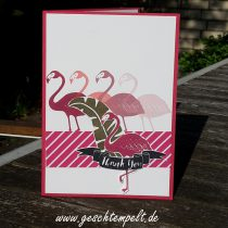 Stampn up, Pop of Paradies, Pink mit Pep, Pineapple, Ananas,Flamingo