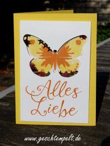 Stampin up, Schüttelkarte, Shaker card, Watercolor wings, Grüße rund ums Jahr, Time of Year